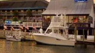 Water's Edge - Charleston