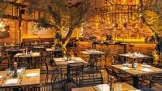 Herringbone – La Jolla