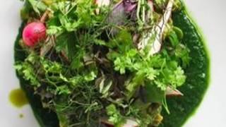 Plant Food + Wine Venice