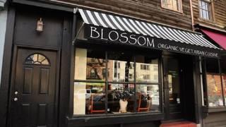 Blossom- Chelsea