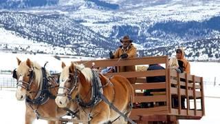 4 Eagle Ranch