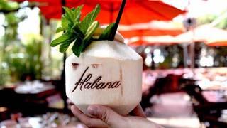 Habana- Irvine Spectrum
