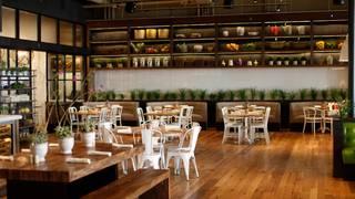 True Food Kitchen - San Diego
