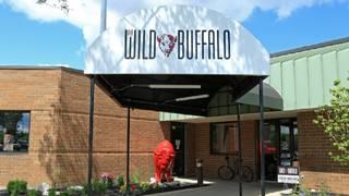 The Wild Buffalo