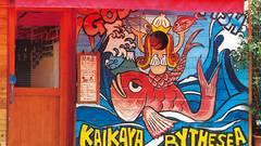 Kaikaya