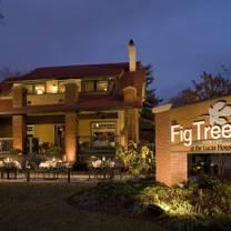 Fig Tree Restaurant Charlotte Nc
